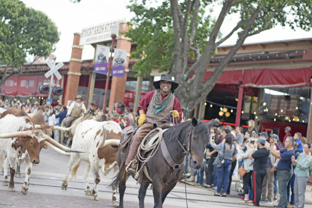 Donald Lee: Preserving cattle drives, black cowboys of the American West