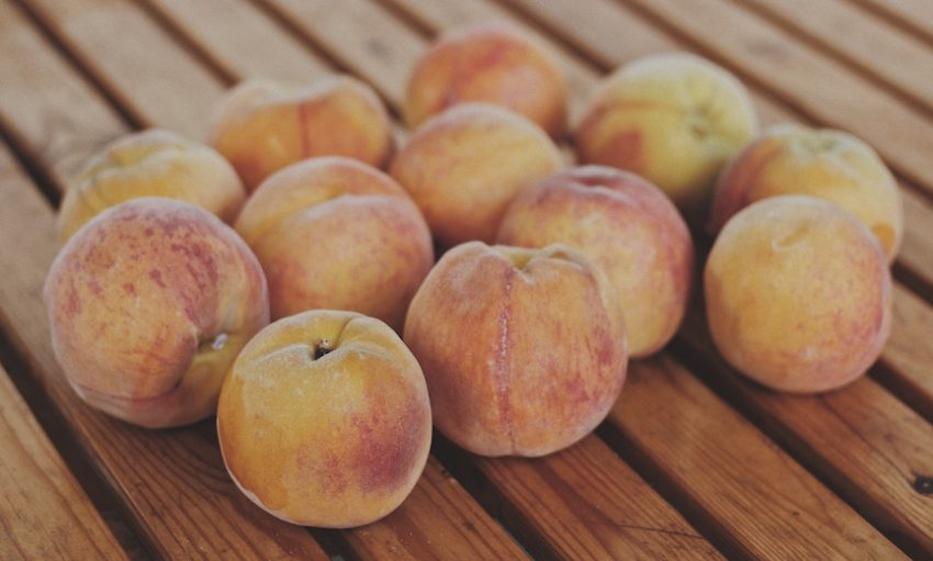 7 of the juiciest peach farms in the Peach State
